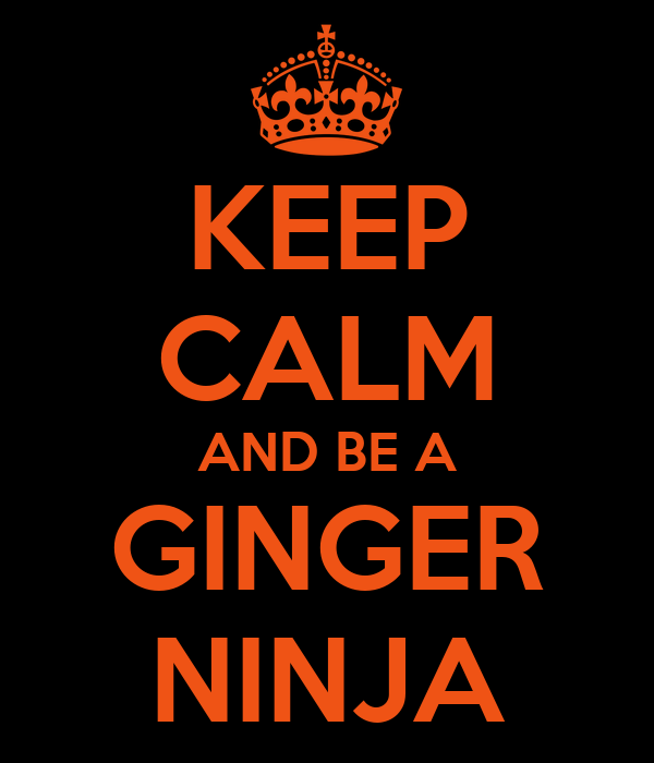 KEEP CALM AND BE A GINGER NINJA