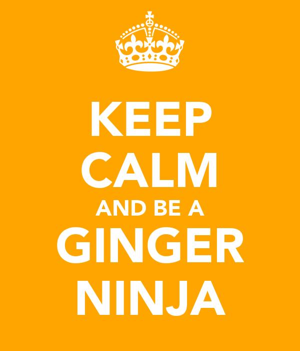 KEEP CALM AND BE A GINGER NINJA