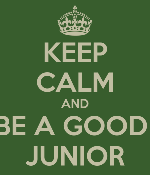 KEEP CALM AND BE A GOOD  JUNIOR