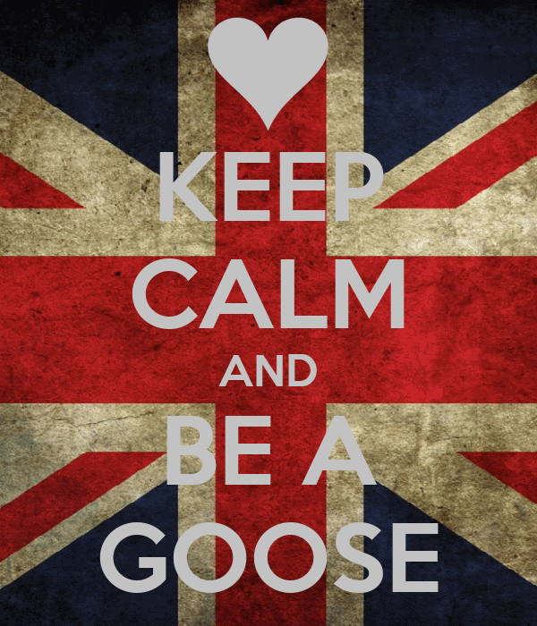 KEEP CALM AND BE A GOOSE
