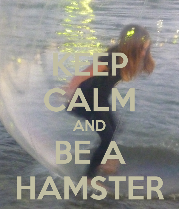 KEEP CALM AND BE A HAMSTER