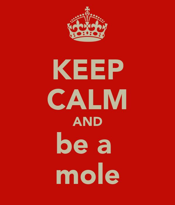 KEEP CALM AND be a  mole