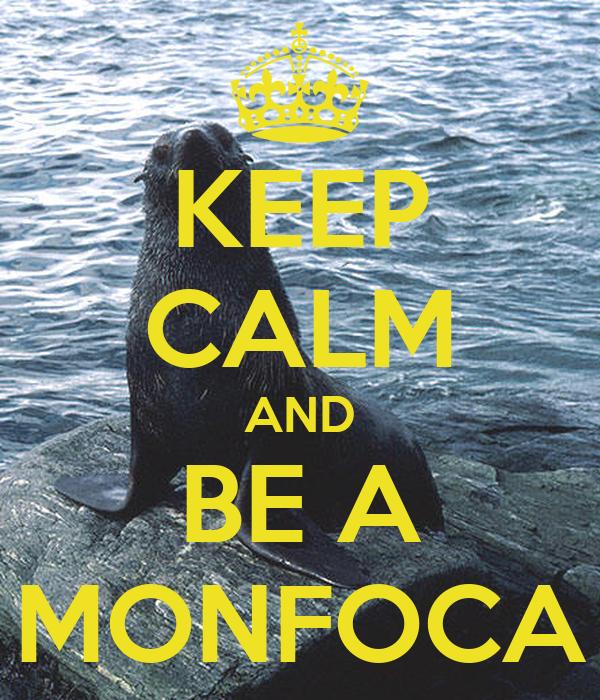 KEEP CALM AND BE A MONFOCA