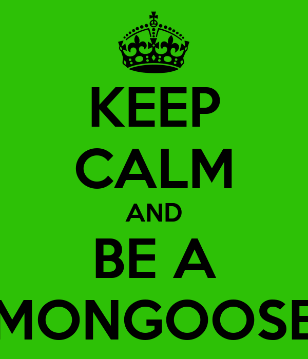 KEEP CALM AND BE A MONGOOSE