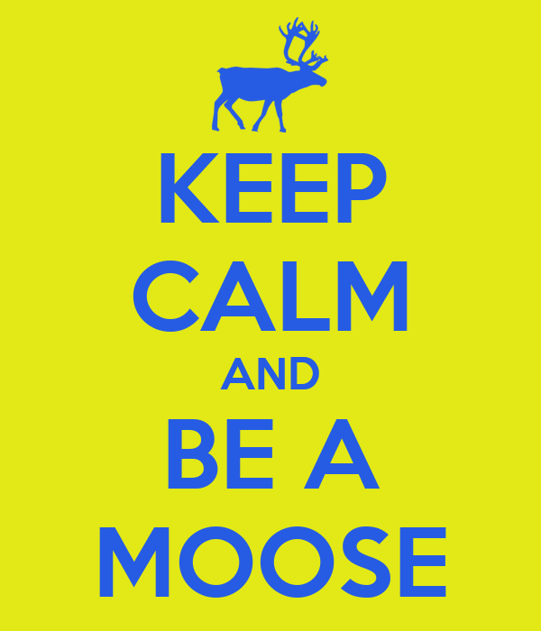 KEEP CALM AND BE A MOOSE