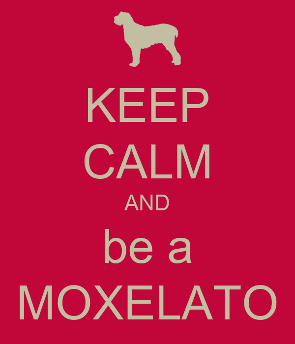 KEEP CALM AND be a MOXELATO