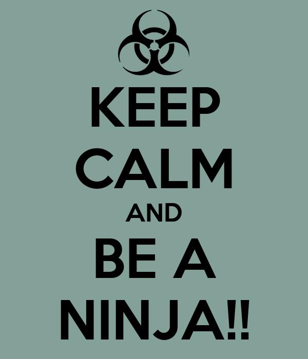 KEEP CALM AND BE A NINJA!!