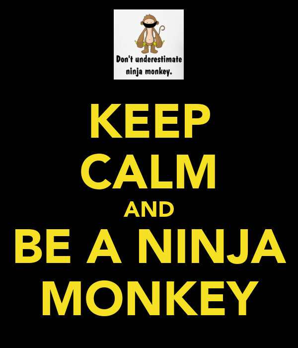 KEEP CALM AND BE A NINJA MONKEY