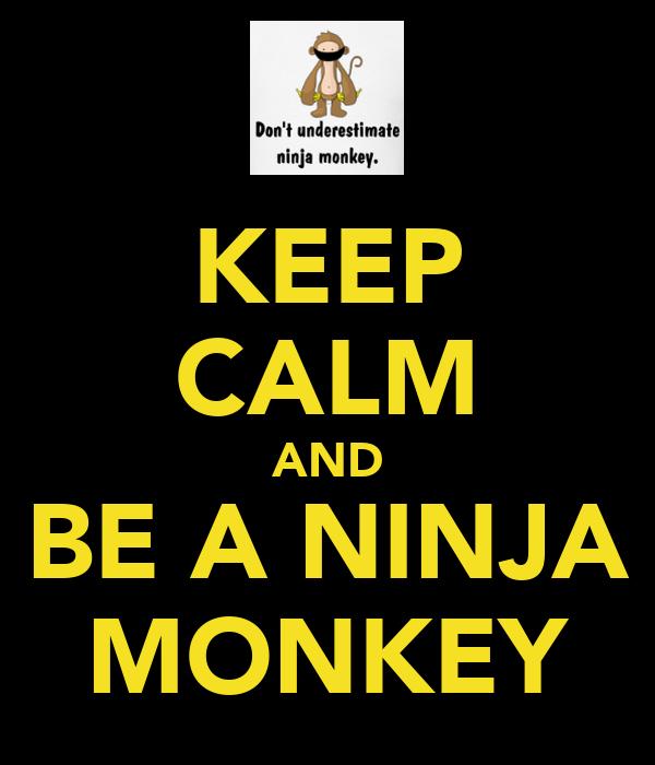 KEEP CALM AND BE A NINJA MONKEY