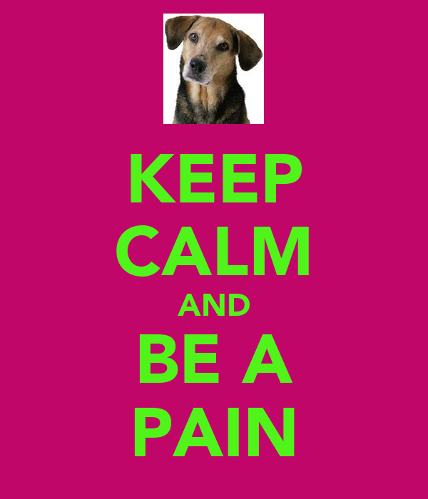 KEEP CALM AND BE A PAIN