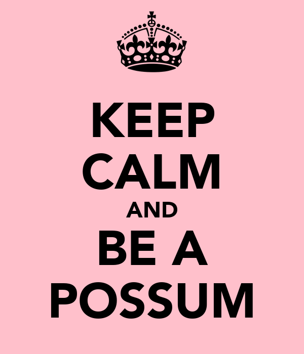 KEEP CALM AND BE A POSSUM