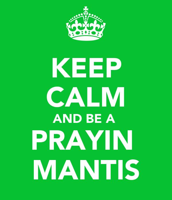 KEEP CALM AND BE A  PRAYIN  MANTIS