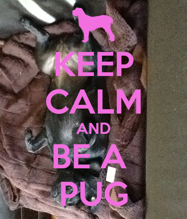 KEEP CALM AND BE A  PUG
