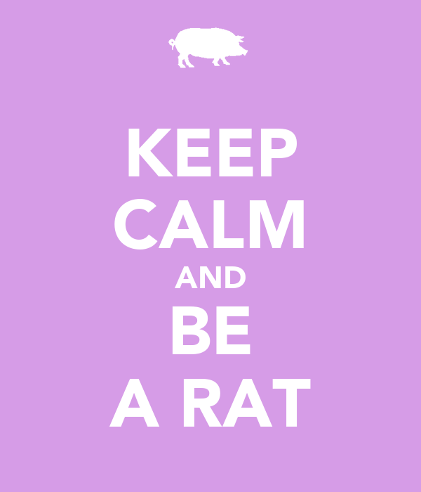 KEEP CALM AND BE A RAT