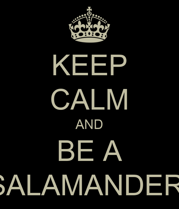 KEEP CALM AND BE A SALAMANDER