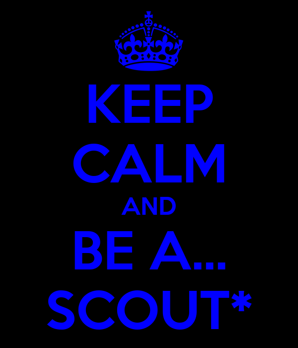 KEEP CALM AND BE A... SCOUT*