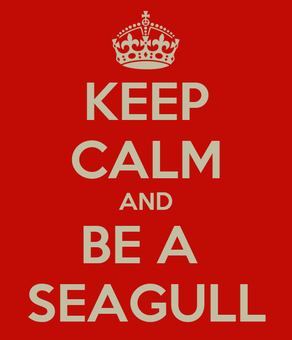 KEEP CALM AND BE A  SEAGULL