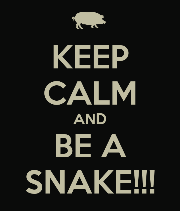KEEP CALM AND BE A SNAKE!!!