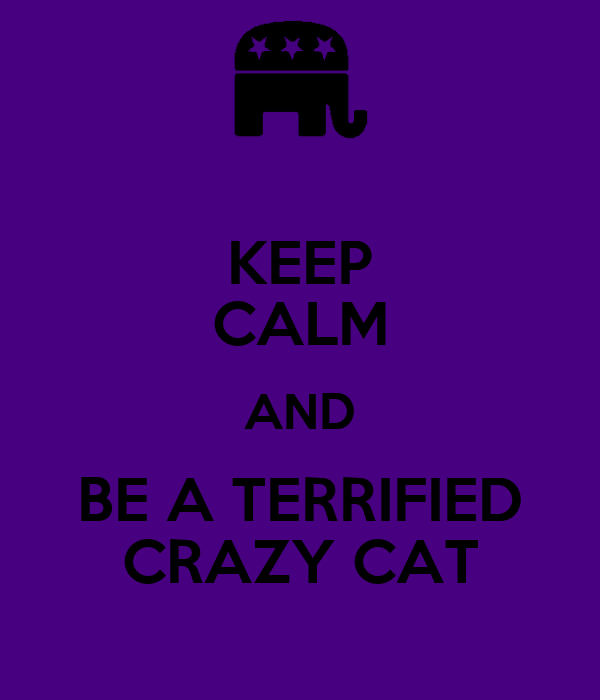 KEEP CALM AND BE A TERRIFIED CRAZY CAT