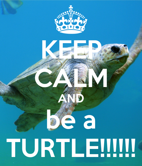 KEEP CALM AND be a TURTLE!!!!!!
