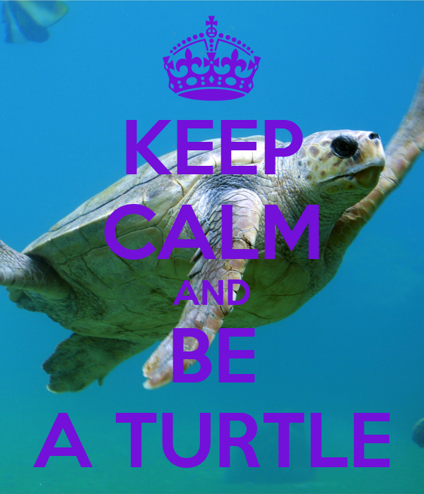 KEEP CALM AND BE A TURTLE