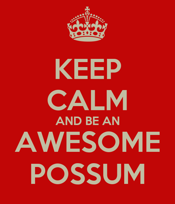 KEEP CALM AND BE AN AWESOME POSSUM