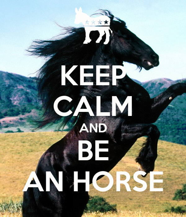 KEEP CALM AND BE AN HORSE