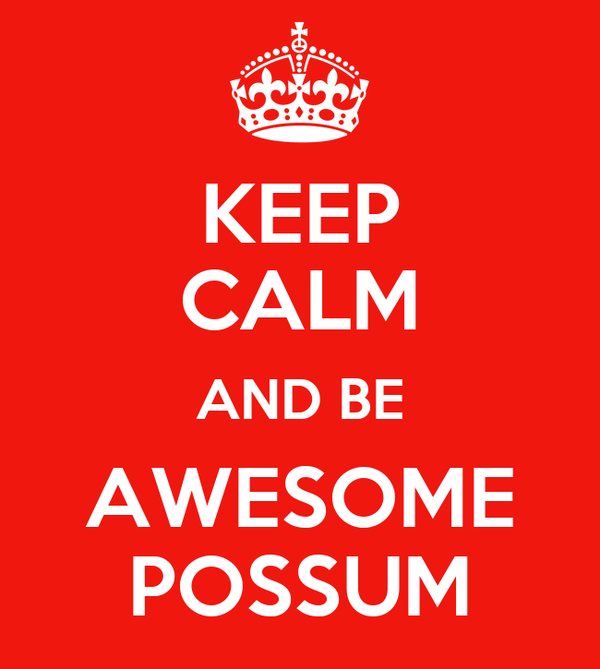 KEEP CALM AND BE AWESOME POSSUM