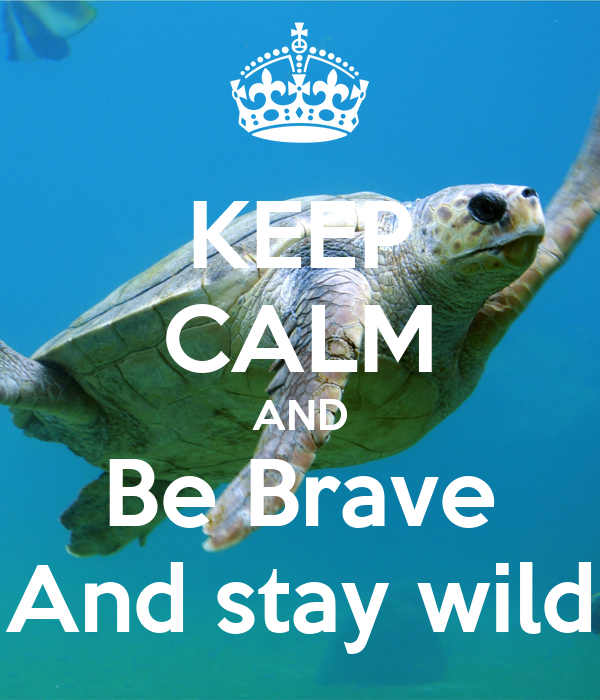 KEEP CALM AND Be Brave And stay wild