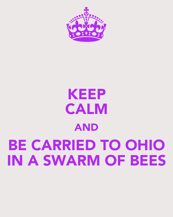 KEEP CALM AND BE CARRIED TO OHIO IN A SWARM OF BEES