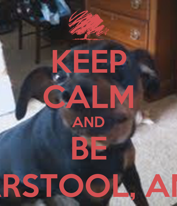 KEEP CALM AND BE DANTE, BARSTOOL, AND SHELBY