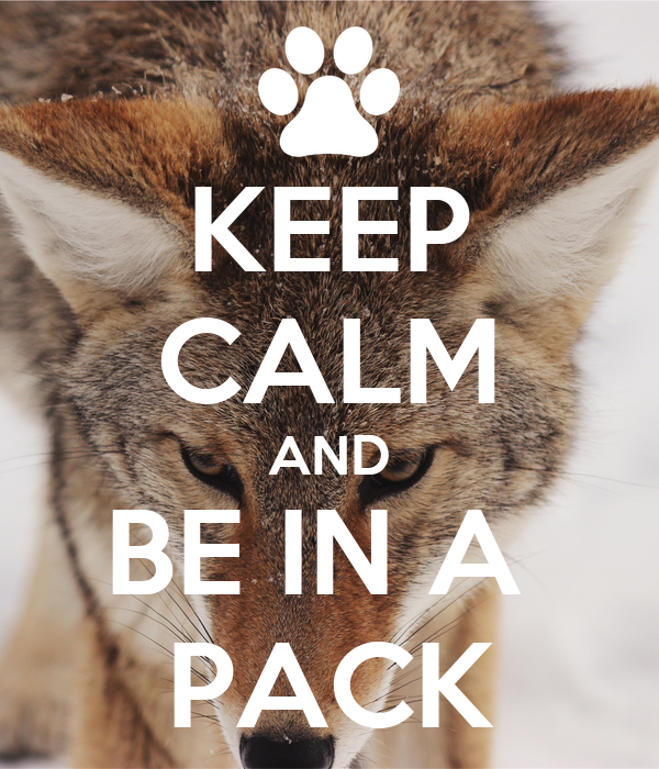KEEP CALM AND BE IN A  PACK