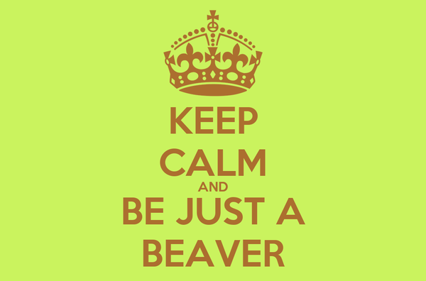 KEEP CALM AND BE JUST A BEAVER