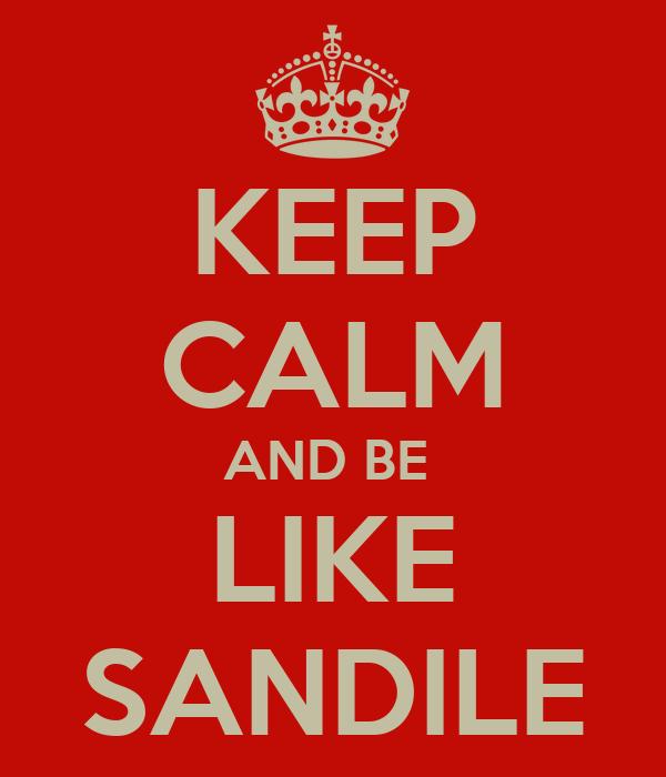 KEEP CALM AND BE  LIKE SANDILE