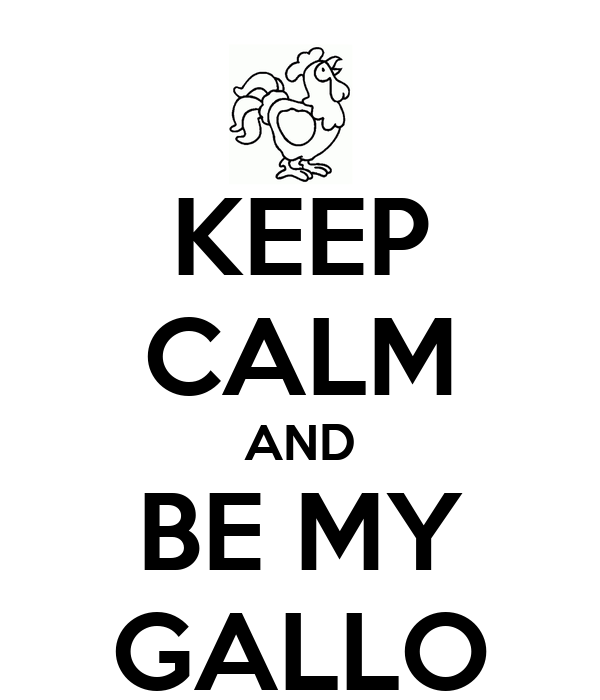 KEEP CALM AND BE MY GALLO