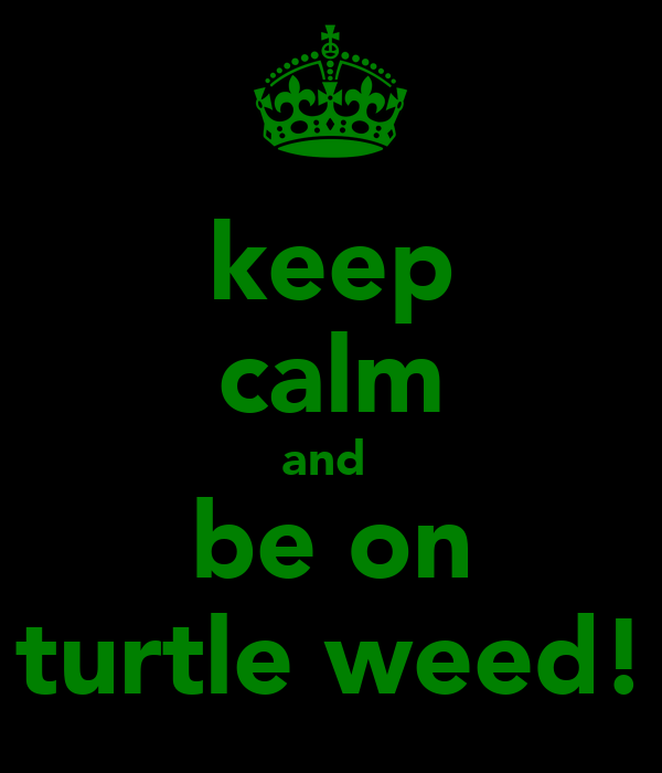 keep calm and  be on turtle weed!