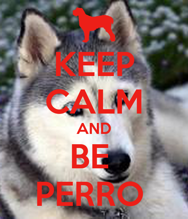 KEEP CALM AND BE  PERRO
