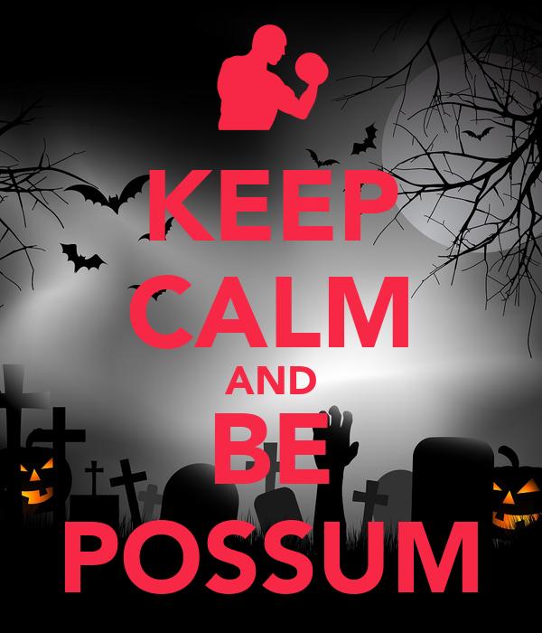 KEEP CALM AND BE POSSUM
