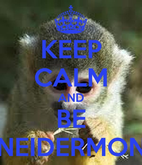 KEEP CALM AND BE SCHNEIDERMONKEY