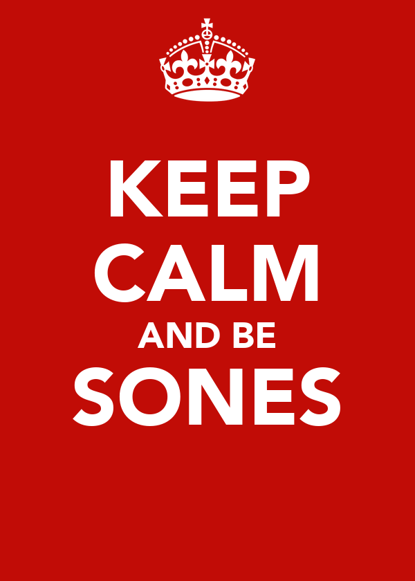 KEEP CALM AND BE SONES