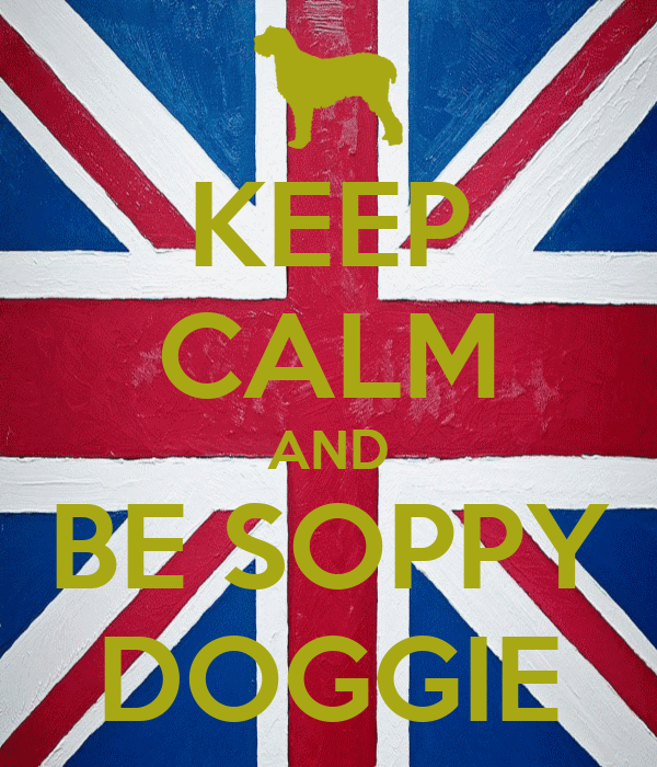 KEEP CALM AND BE SOPPY DOGGIE