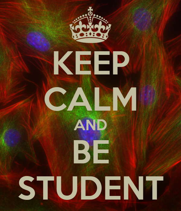 KEEP CALM AND BE STUDENT