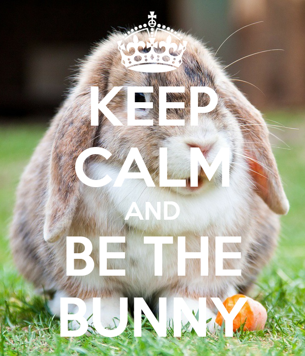 KEEP CALM AND BE THE BUNNY