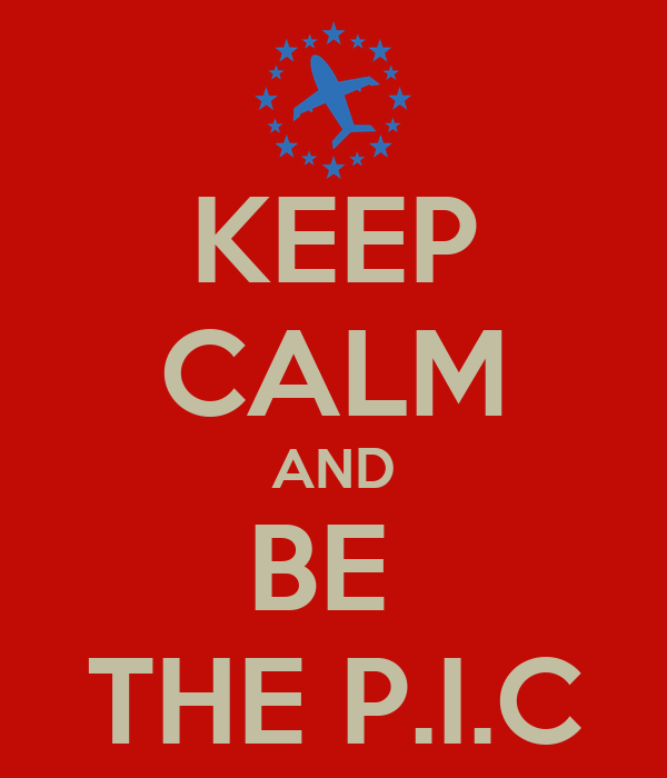 KEEP CALM AND BE  THE P.I.C