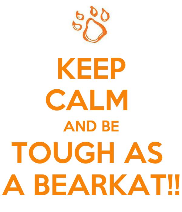 KEEP CALM  AND BE TOUGH AS  A BEARKAT!!
