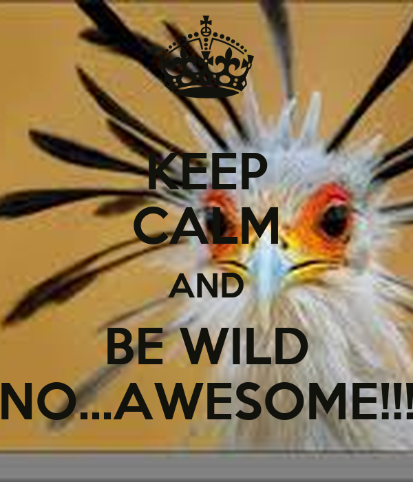 KEEP CALM AND BE WILD NO...AWESOME!!!