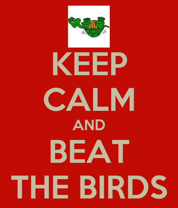 KEEP CALM AND BEAT THE BIRDS
