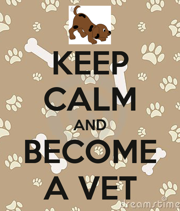 KEEP CALM AND BECOME A VET