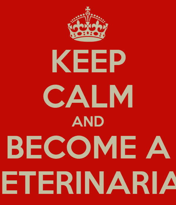 KEEP CALM AND BECOME A  VETERINARIAN