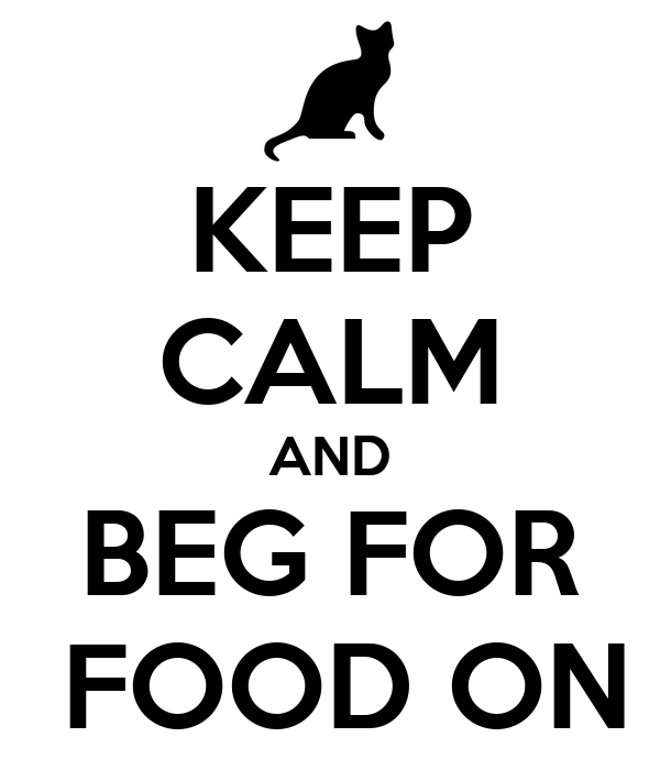 KEEP CALM AND BEG FOR  FOOD ON